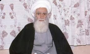 محمد حسین  سیبویه