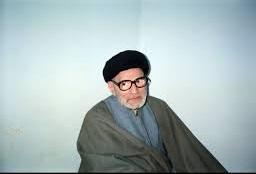 سید محمد باقر  حجت طباطبایی